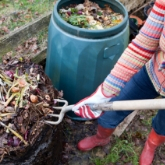 We're recruiting for our Master Gardener & Master Composter programme