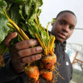 Why Triodos Supports Sustainable Food